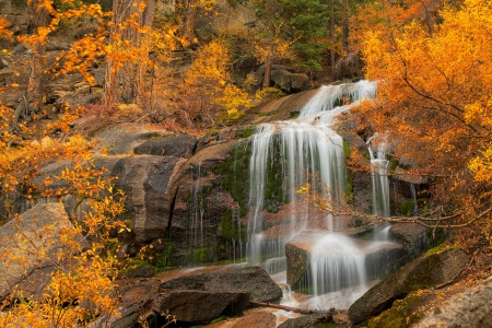 Autumn in the Eastern Sierra's, California - forest, waterfall, nature, usa