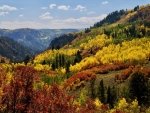Colors of Colorado