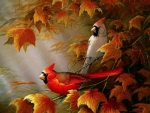 Cardinals of Autumn