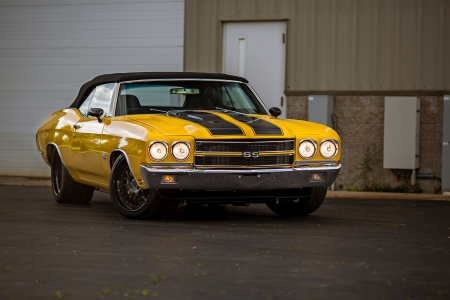 Seventy Chevelle - Yellow, GM, Black Stripes, Muscle