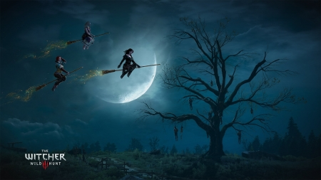 Witches - luminos, the witcher, halloween, blue, night, witch, luna, silhouette, up, moon, fantasy