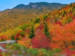 Grandfather Mountain in Peak Fall Color