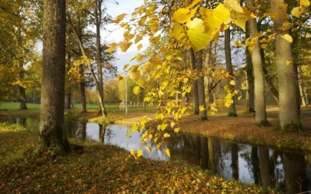Park in Latvia - Latvia, park, trees, canal, autumn