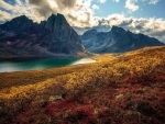 Dream-like conditions during autumn in the Yukon