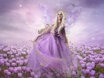 Purple Tulips and Fairy