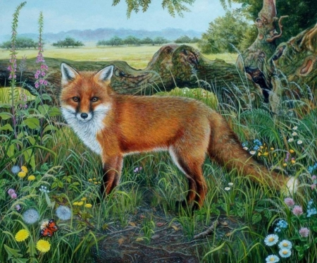 The Red Fox - red, fox, grass, animal, paint
