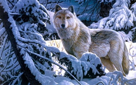 Wolves Look - wolf, white, snow, winter, tree