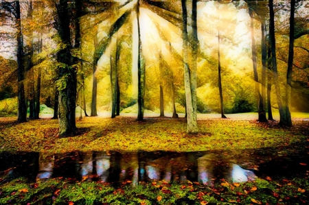 Spiritual Sunrays in Autumn