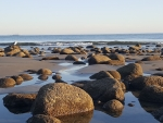 Rincon Point Beach, Carpinteria, California