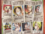 One Piece Wanted #1