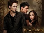 new mooon TWILIGHT SAGA