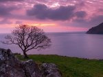 Sunrise at Murlough Bay, Northern Ireland
