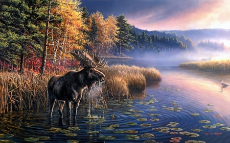 Moose by Lake - art, autumn, moose, lake, mist