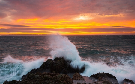 Sunrise on Guernsey Island - wave, sea, splash, Europe, rock, sunrise, island