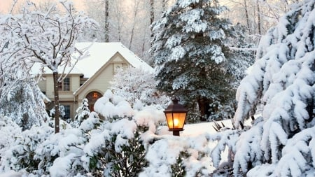 winter wonderland - tree, lamp, house, snow, winter
