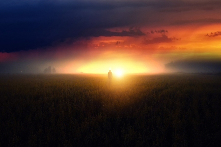 Wandering man - grass, beautiful, sunset, sky, clouds, landscape, field, sun, man, nature