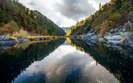 Looking downstream on the Rogue River, Oregon - trees, usa, reflections, water, clouds, sky