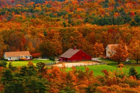 Autumn Country - autumn, barn, farm, fall, colors, country