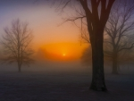 Misty November Sunrise