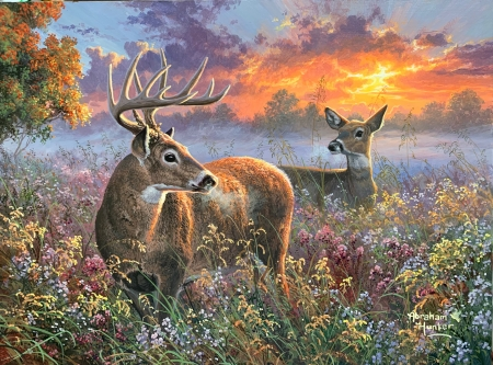 Wild Enchantment - painting, sunset, trees, clouds, sky, deer, meadow, artwork
