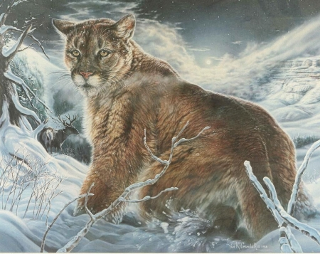 Cougar in the Snow - snow, cat, paint, winter, cougar
