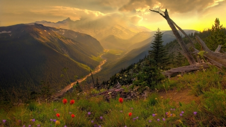 Sunset over the mountain - valley - sunset, valley, field, pretty, orange, HD, dusky, mountain, photography, wild, flowers, beauty, scenery