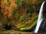 Autumn at Silver Falls State Park, Oregon