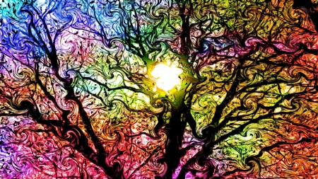 psycedelic sunrise - tree, sunrise, breanch, psycedelic