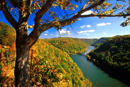 West Virginia - hills, Virginia, river, trees