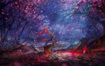 Fantasy forest - fantasy, dark, magic, beautiful, enchanted, night, forest, spring