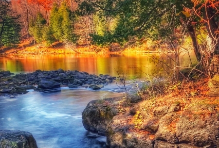 River meets lake in one of Ontario's provincial parks, Murphy's Point, Canada - colors, leaves, ter, trees, fall