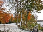 Early Winter Snow In Autumn