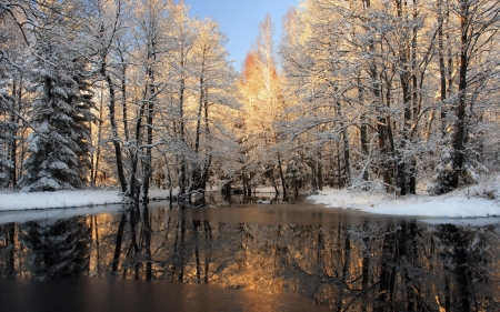 First Snow - sky, reflection, trees, lake