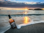 Sunset on a Bottle of Jack Daniel's