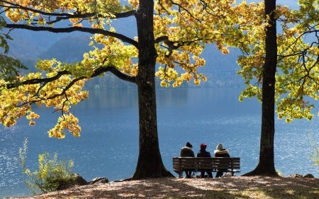 By Lake in Germany - autumn, Germany, trees, lake, bench