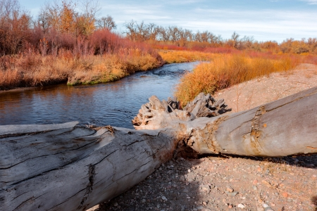 Big Thompson River in Loveland Colorado - fall, water, autumn, colors, sky, trees, wood