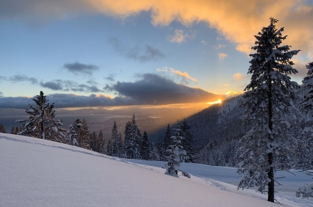 Above Incline Village Lake Tahoe Nevada - sky, snow, winter, sunset, trees, clouds