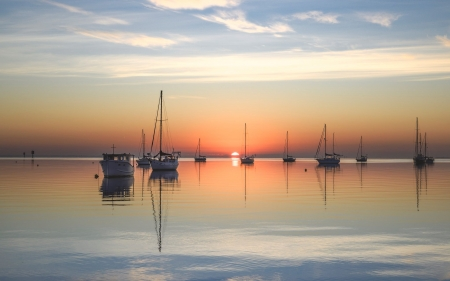 Yachts at Sunrise - marina, yachts, sunrise, Australia