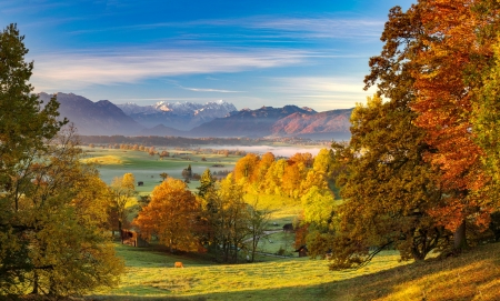 Golden autumn - autumn, view, golden, village, beautiful, trees, fall, sky, mountain, pasture