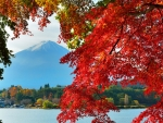 Autumn in Japan