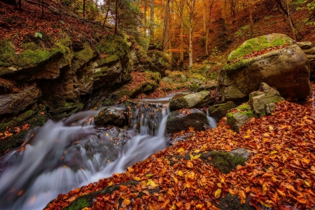 Waterfall in autumn - autumn, leaves, cascades, waterfall, trees, foliage, fall, forest, stones, moss