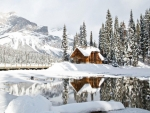 Cozy Cabin in Yoho National Park, British Columbia