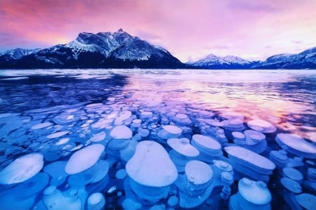 Ice Bubbles in Abraham Lake, Alberta