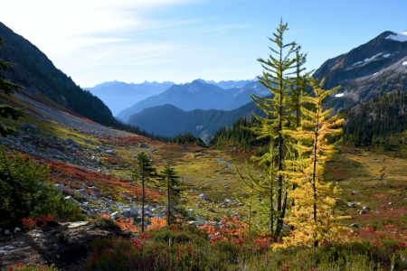 North Cascades National Park, Washington - fall, colors, sky, usa, autumn