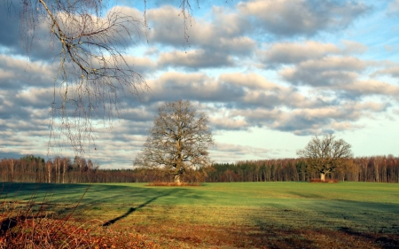 Autumn Field in Latvia - Latvia, clouds, trees, field