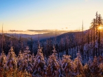 First snowfall in the Klamath Mountains, Oregon