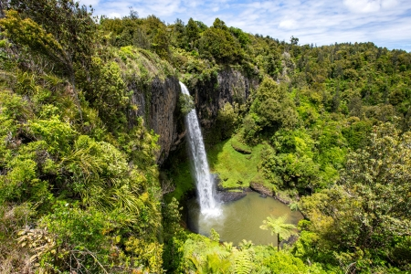 Bridal Veil Falls, New Zealand - forest, waterfall, new zealand, nature