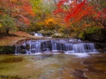 Water cascades in autumn forest