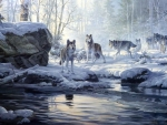 Wolves Near The Snowy River