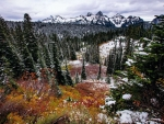 Fall meets Winter in Mount Rainier National Park, Washington